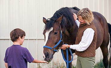 StarBrite Stables: Volunteer holding a horse while boy feeds